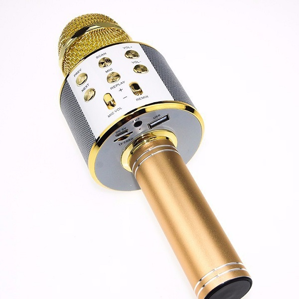 Micro karaoke 858