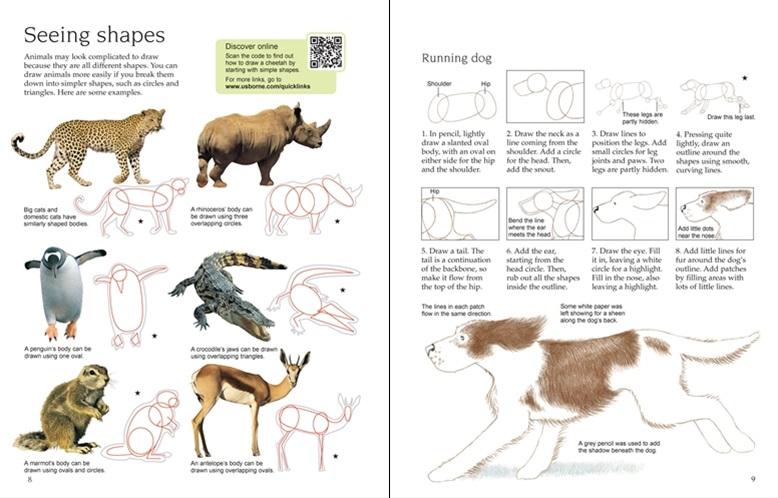Usborne art ideas: drawing animals